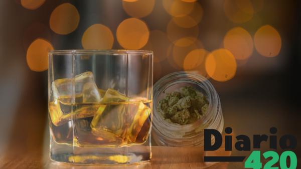 Un estudio concluye que el consumo de cannabis reduce el de alcohol
