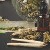 Guerra contra la marihuana de las industrias del alcohol y farmaceutica