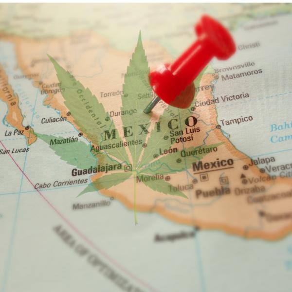 México se manifiesta a favor de la legalización de la marihuana