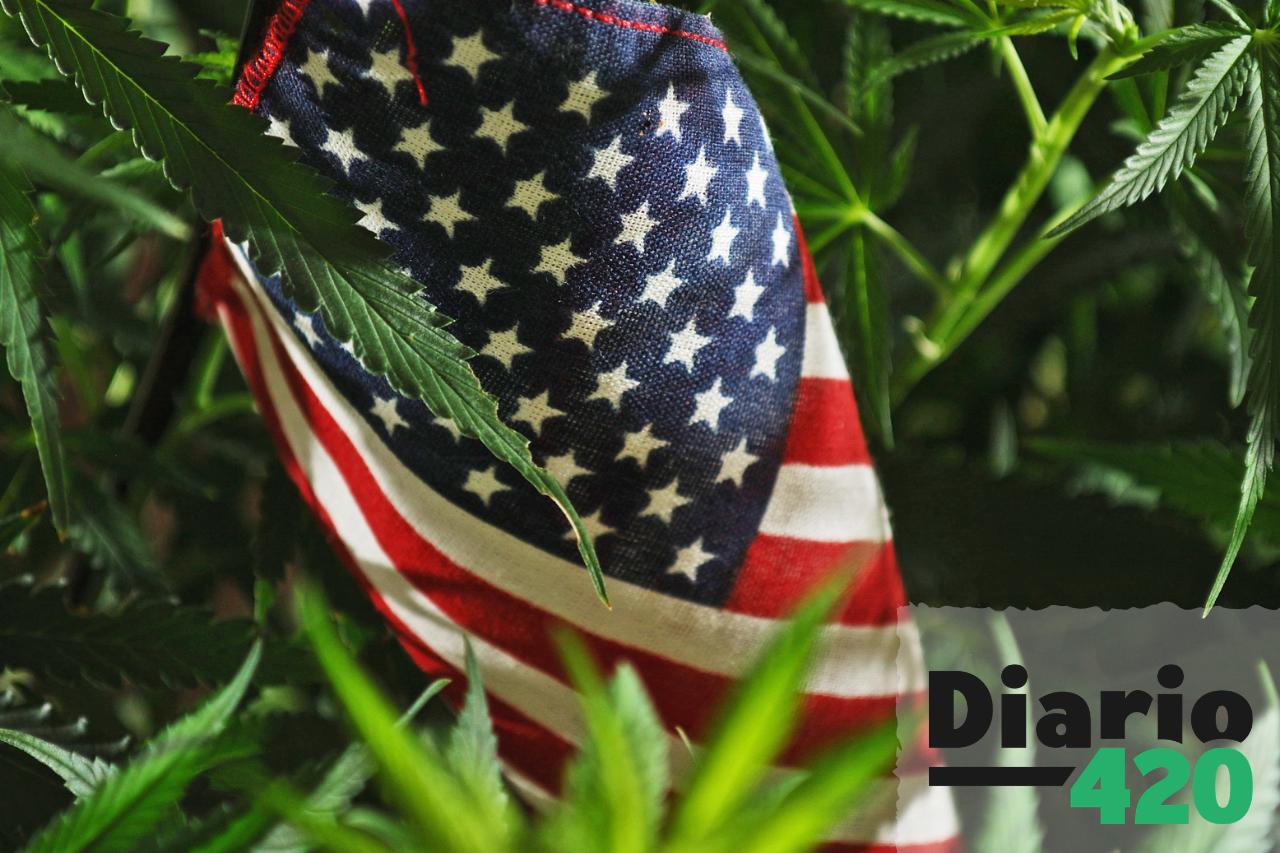 La legalización de la marihuana podría extenderse aún mas en USA