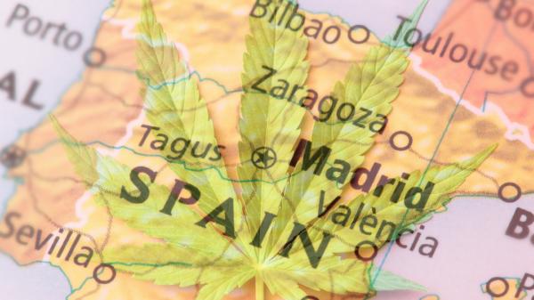 Los españoles están a favor del uso medicinal de la marihuana
