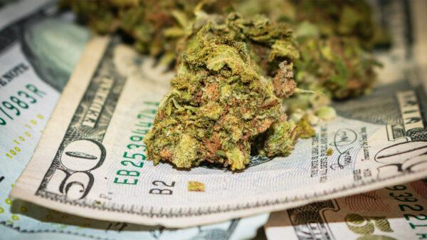 Bancos invierten en cannabis