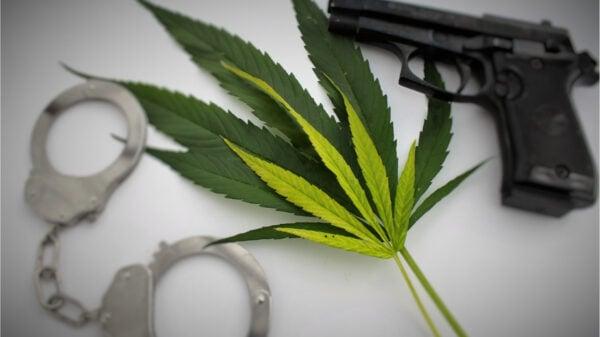 El Cannabis frena la delincuencia en uruguay