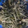 Procesado residuos cannabis